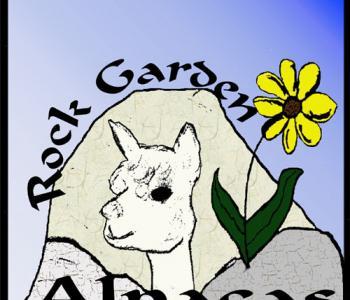 Image Rock Garden Alpacas